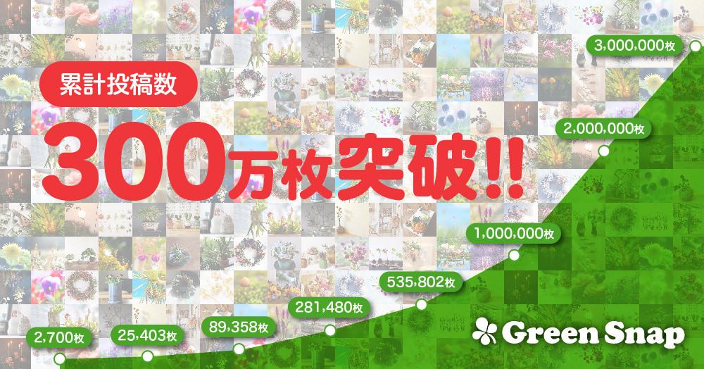 植物写真SNSアプリ「GreenSnap」累計投稿枚数300万枚突破